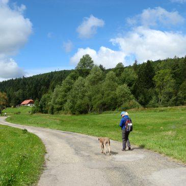 Spirituelle Wanderung im Frankenland – Angebot für Männer